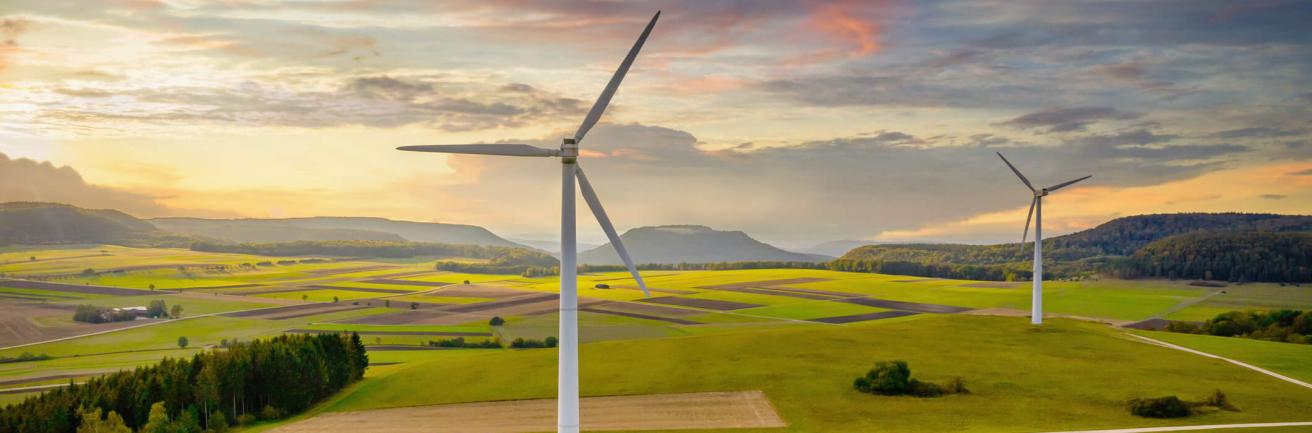 Renewable Electricty for BT Suppliers and Customers